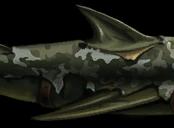 Акула — Отсюда видно мой дом!